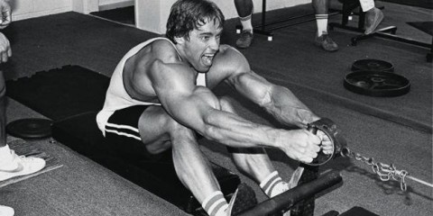 arnold working lat muscle row