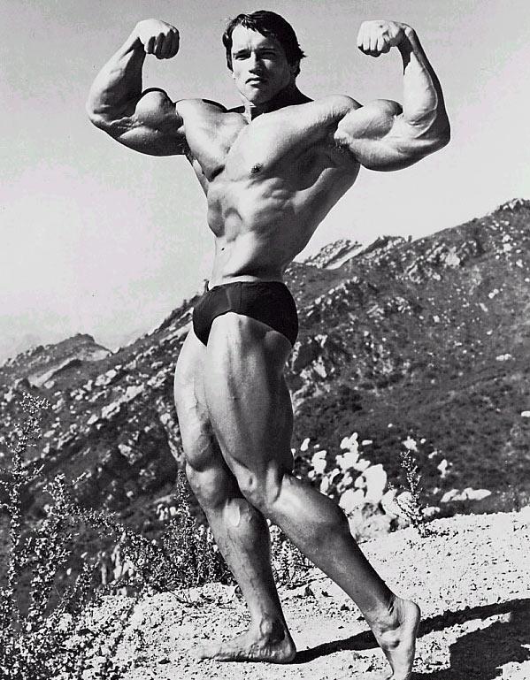 Arnold schwarzenegger the best gallery of this bodybuilding icon newsletter malvernweather Gallery