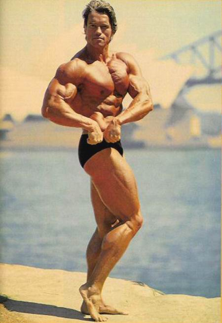 Arnold schwarzenegger the best gallery of this bodybuilding icon newsletter malvernweather Gallery