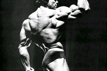 Arnold-Schwarzenegger-Shadow