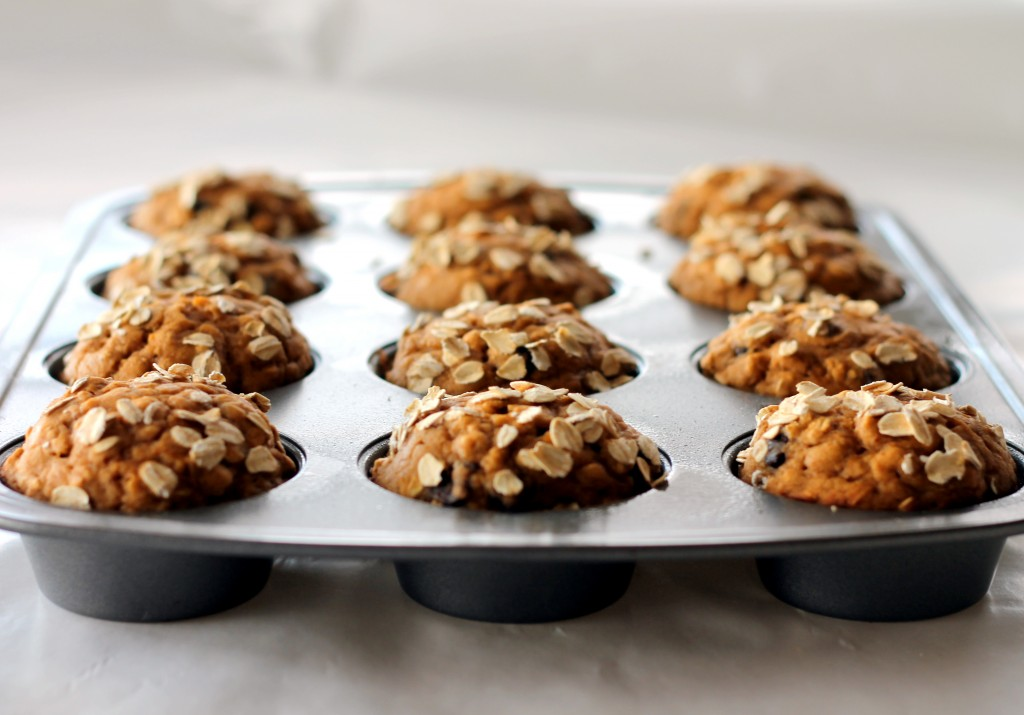 6_low-fat_pumpkin_oatmeal_chocolate_chip_muffins