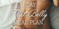 14 Day Flat Belly Meal Plan Ingredient List + Breakdown Per Meal!