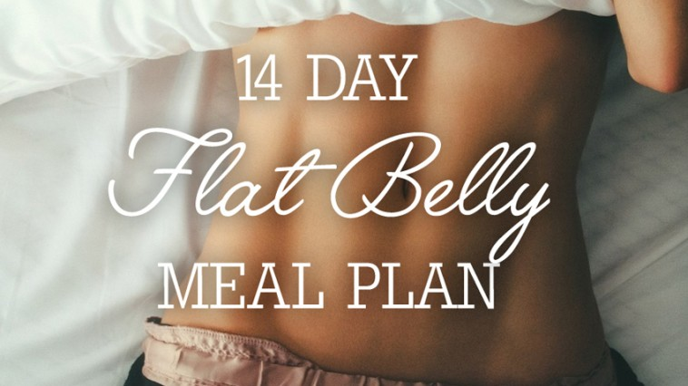 14 Day Flat Belly Meal Plan Ingredient List Breakdown Per Meal Trimmedandtoned