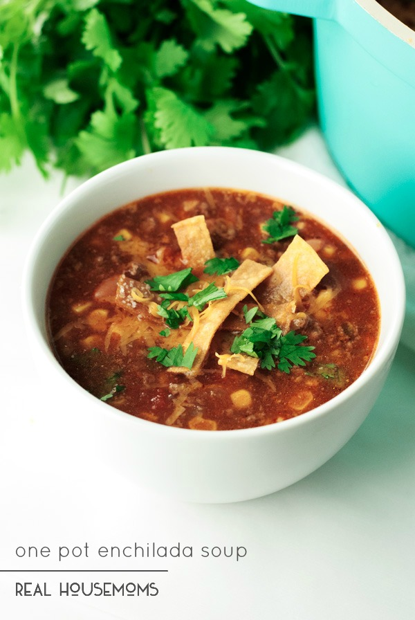 10. One Pot Enchilada Soup