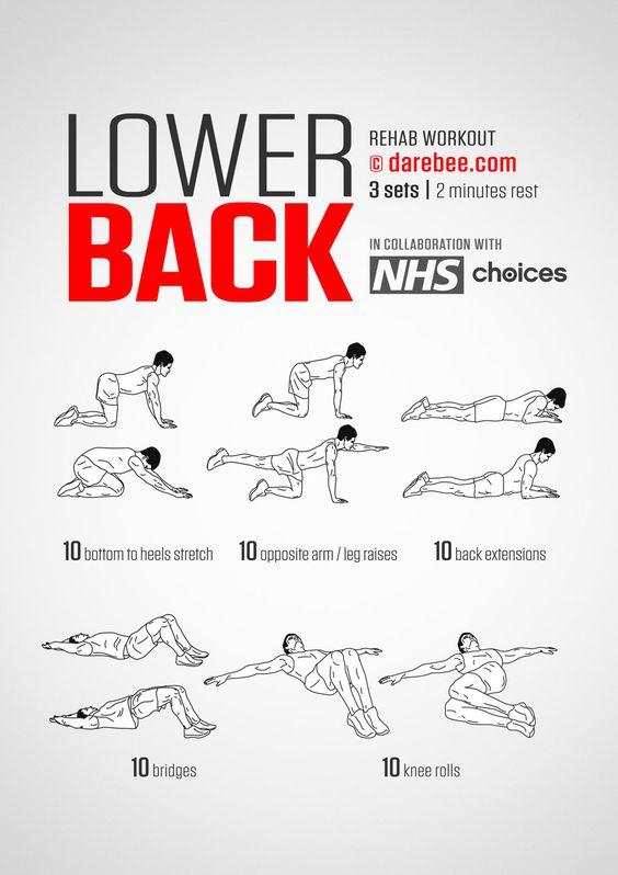 DareBee Lower Back Workout