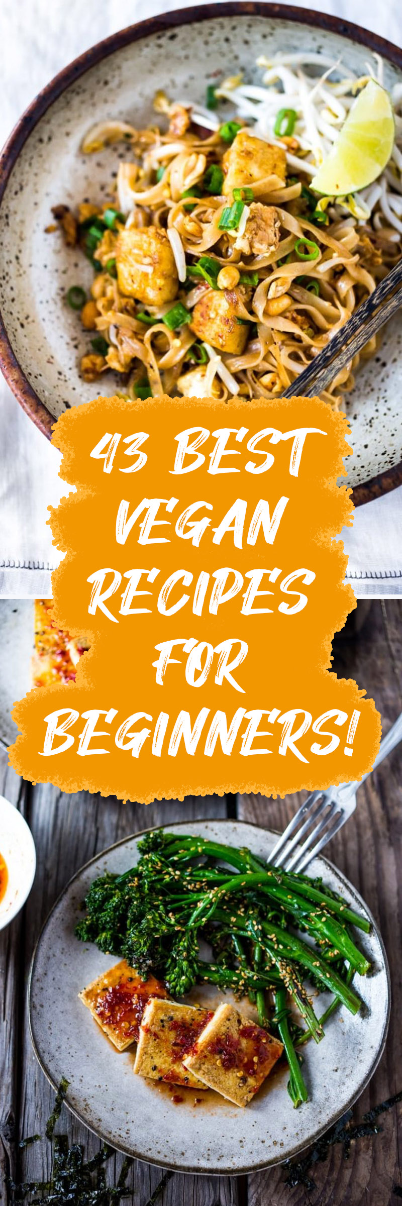 43 Easy Vegan Recipes For Rookies That Are Wholesome & Scrumptious! 1